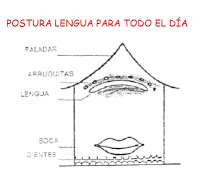 POSTURA-LENGUA