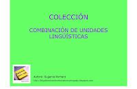 PORTADA-COMBINACION-UNIDADES-LINGUISTICAS